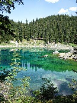Lake Carezza, Dolomites, Forest, Landscape