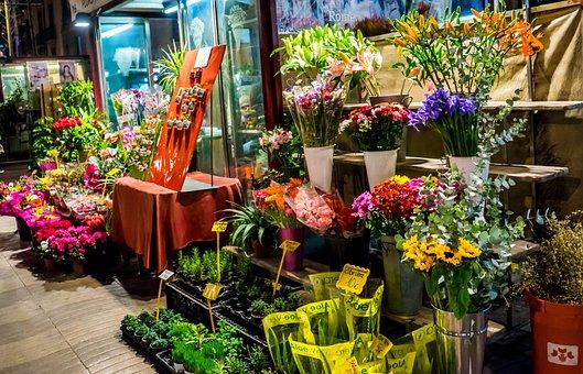 Flower Shop, Night, Street, Downtown, Europe