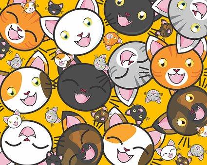 Cats, Cute, Kitty, Kitties, Kitten, Adorable, Feline