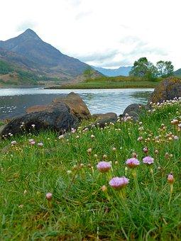 Glencoe, Scotland, Highlands, Glen Coe, Nature