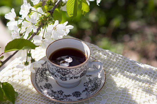 Spring, Cup, Drink, Coffee