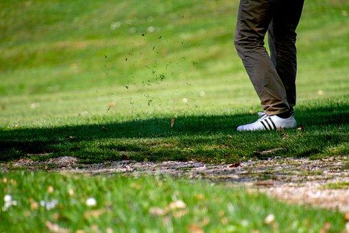 Golf, Golfers, Tee, Sport, Grass, Nature, Golf Course