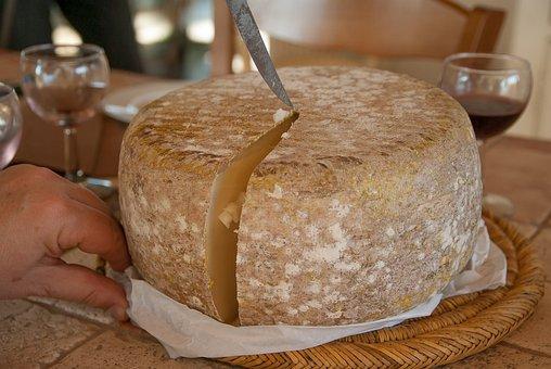 Cheese, Sheep, Cut, Milk