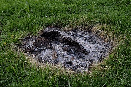 Campfire, Ash, Wood Ash, Barbecue, Firewood, Hot