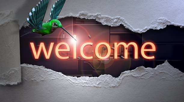 Welcome, Bright, Breakthrough, Hummingbird, Bird