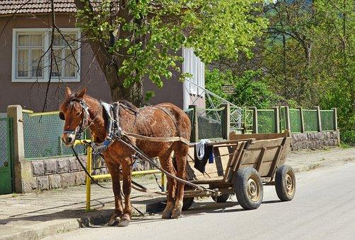 Bulgaria, Village, Horse, Wagon, Spring, Country, Rural