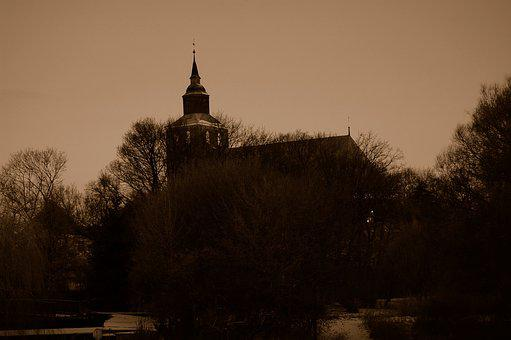 Tree, Dusk, Dawn, Winter, Evening, Altentreptow
