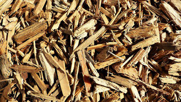 Dry, Lot, Grass, Nature, Shavings, Wood, Texture Wood