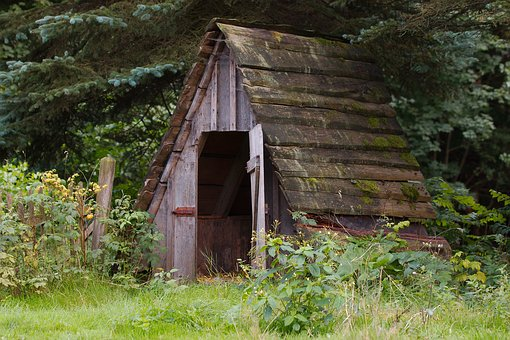 Wood, Barn, Rustic, Home, Leave, Grass, Barrack, Woods