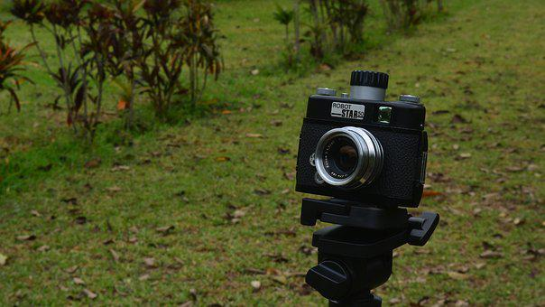 Camera, Similar, Photography, Outdoors, Nature, Lawn