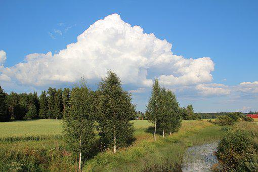 Nature, Grass, Tree, Panorama, Outdoors, River, Clouds