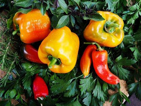 Food, Vegetable, Pepper, Fruit, Garden, Healthy