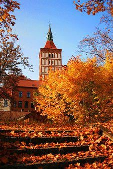 Autumn, Tree, Gold, At The Court Of, Architecture