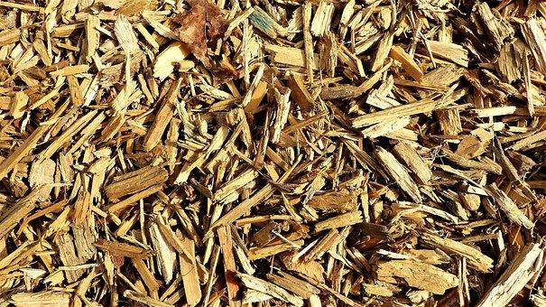 Dry, Lot, Grass, Heap, Wood, Shavings, Nature, Cut Wood