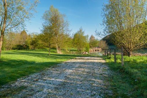 Tree, Lawn, Nature, Landscape, Normandy, France