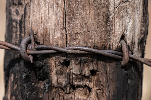 Wood, Rusty, Old, Lock, Security, Barbed Wire, Wire
