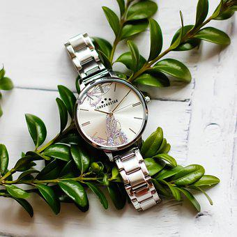 Clock, Leaf, No One, Nature, Plant, Ladies Watch