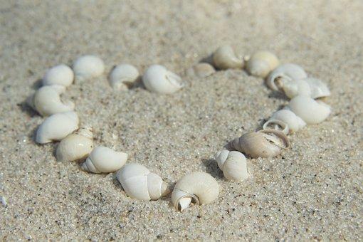 Beach, Sand, The Coast, Seashell, Shoreline, Ocean