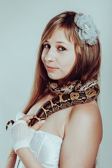 Boa Constrictor, Snake, Woman, With A Snake, Lovely