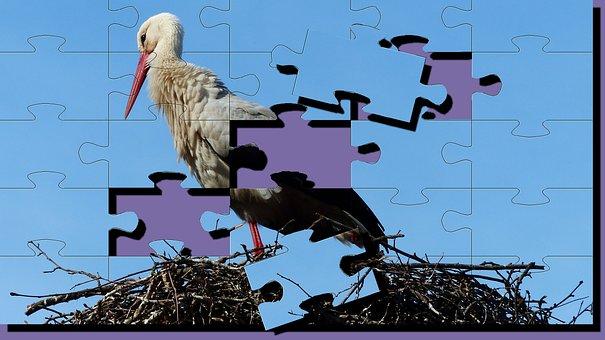 Stork, Puzzle, Bird, Nature, Sky, Fauna, Nest, Pen