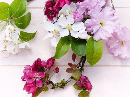 Flowers, Spring, Fruit Tree, Embellishment, Pear