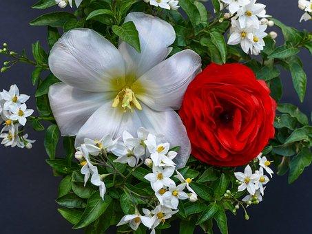 Flower Arrangement, Red Ranunculus, Jasmin
