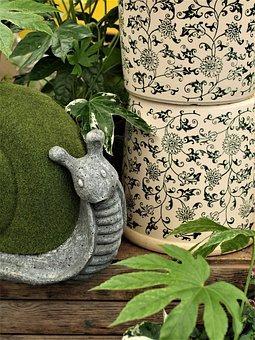 Flora, Flower, Leaf, Nature, Desktop, Pot, Decoration