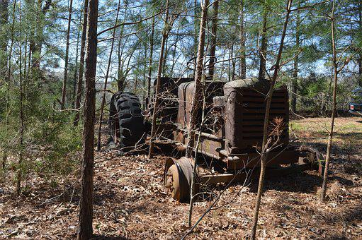 Wood, Tree, Nature, Tractor, Americana, Old Iron