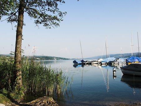 Seengen, Halwiler Lake, Waters, Nature, Travel, Sea