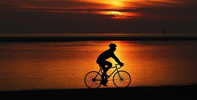 Design, Wheel, Bike, Cyclist, Transportation, Panoramic