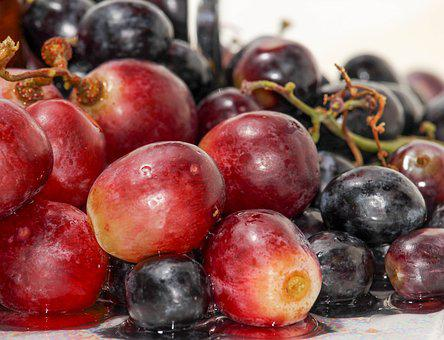 Fruit, Food, Berry, Grow, Sweet