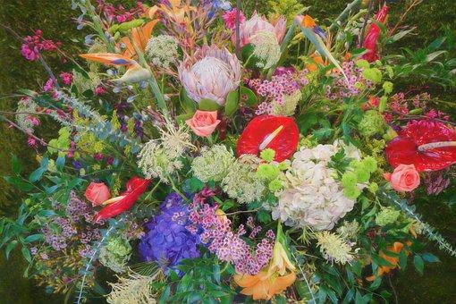 Bouquet, Flower, Garden, Botanical, Tropical, Lief