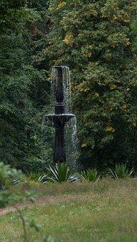 Fountain, Tree, Nature, Wood, Travel, Tourism, Park
