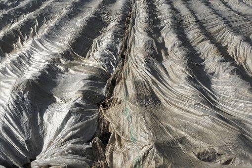 Vegetable Fleece, Harvesting, Fleece, Slide