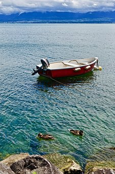 Boat, Tranquil, Ducks, Water, Sea, Nature, Seascape