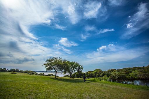 Field, Bucolic Landscape, Landscape, Nature, Sky