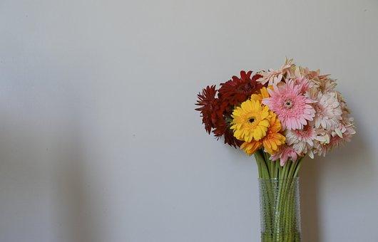 Nature, Flower, Plant, Summer, Bouquet De Fleurs