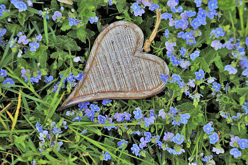 Heart, Wooden, Little Flowers, Spring, Blue, Grass