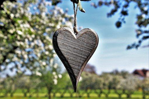 Sad, Heart, Spring, In The Garden, Fruit, Nature, Tree