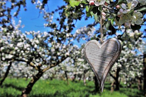 Spring, Heart, Sad, Pendant, Ornament, Emotions