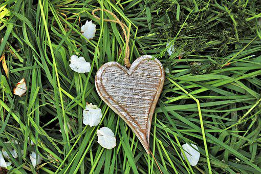 Wooden Heart, Feeling, Spring, In The Garden, Nature