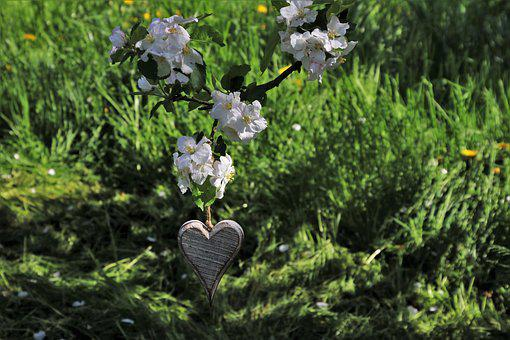 Heart, Ornament, Spring, Pendant, Decoration
