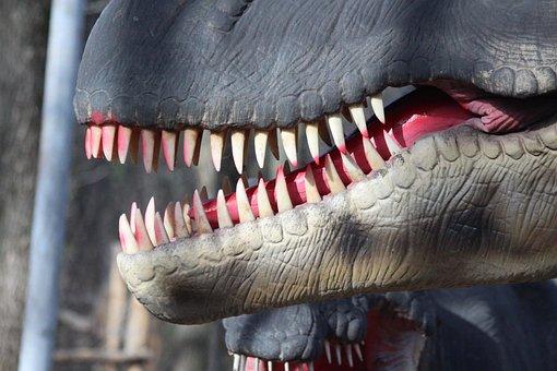 Teeth, Dinosaur, Model, Closeup, Predator