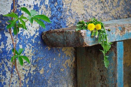 Bench, Old, Background, Scuffed, Ošúchané, Live
