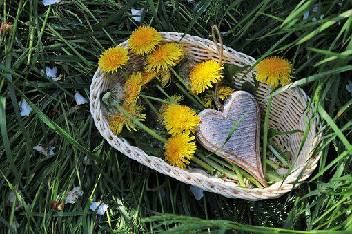 Spring, Dandelion, Shopping Cart, Wicker, Nature