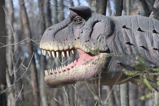 Dinosaur, Nature, Animals, Wood, Teeth, Head, Closeup