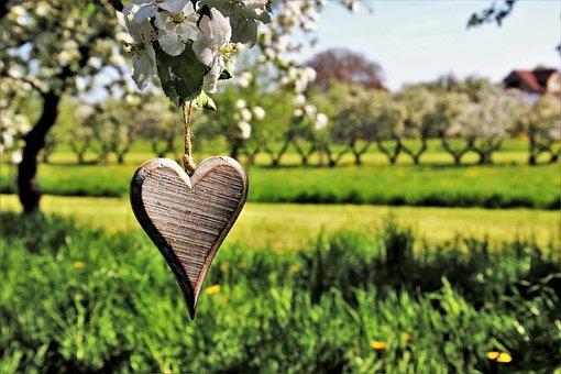 Spring, Feeling, Heart, Pendant, Sad, Nature, Tree