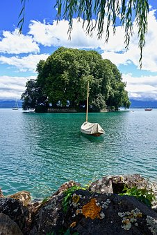Island, Boat, Lake, Flowers, Floral, Water, Tree