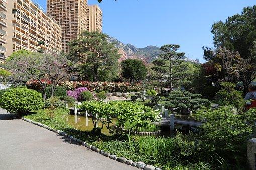 Garden, Tree, Nature, Architecture, Summer, Plant, All