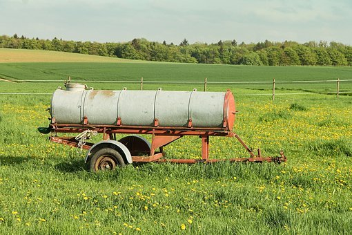Potions Cart, Meadow, Spring, Animal Grazing, Pasture